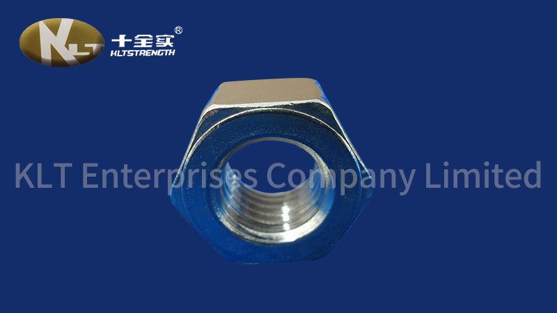 Security Bolts Stainless Steel Aisi Nut