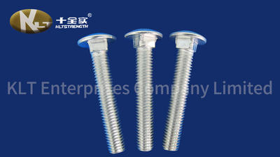 Carriage Bolt Screws And Nuts